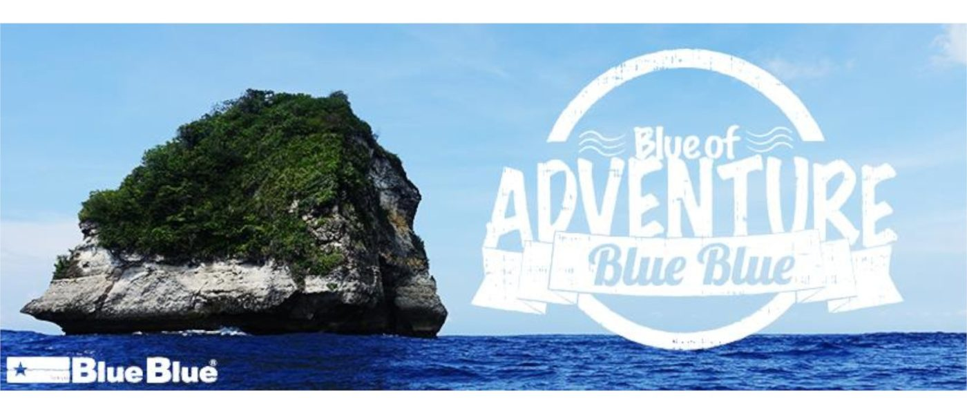 BlueBlue Fishing